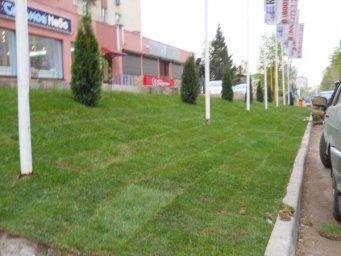 Ландшафтный дизайн Самара